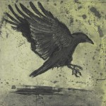 Lynne Peterfreund, A Murder of Crows, no. 17, etching, aquatint on copper.